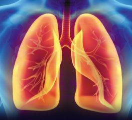 เช็คสุขภาพปอดตัวเองได้ด้วยแอปพลิเคชัน Lung Care