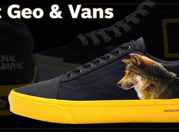 Nat Geo & Vans กับการคอลแลป ชุดรองเท้าผ้าใบ นำเสนอลายภาพกราฟิกธรรมชาติ และสิ่งมีชีวิตทั่วทุกมุมโลก!!