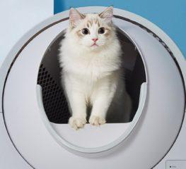 เอาใจทาสแมวกับ CATLINK Automatic Litter Box Lite  สุขาแมวอัจฉริยะจาก Xiaomi