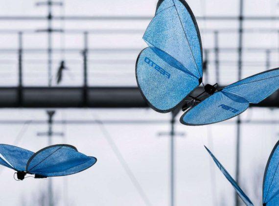 Drone Butterfly หุ่นยนต์ที่จำลองการบินจากผีเสื้อจริง เทคโนโลยีสอดแนมทหารสุดล้ำแห่งยุคดิจิตอล