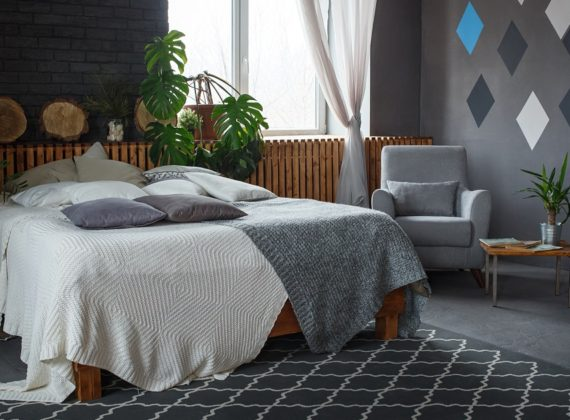รวม 5 ไม้กระถางช่วยเติมอากาศบริสุทธิ์ สามารถนำไปไว้ในห้องนอนได้